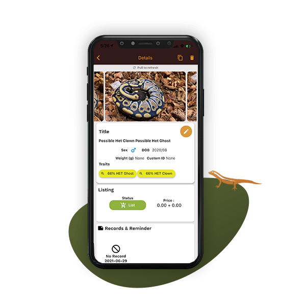 reptile listing details